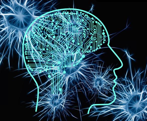 E Se Todas as Áreas do Nosso Cérebro Funcionasse ao Mesmo Tempo e com 100% de Potência