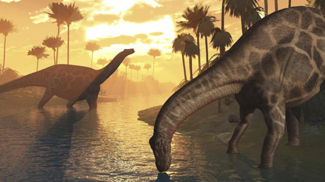 Você Sabe Como Realmente Morreram Todos os Dinossauros